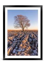 The Lone Tree at Malham, Framed Mounted Print