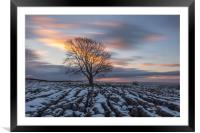 Lone Tree at Malham - Long Exposure, Framed Mounted Print