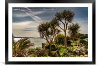 Tropical Tenby, Framed Mounted Print