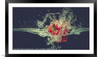 Red bell chili drops into water with splash, Framed Mounted Print