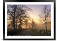 January Sunrise In Hampshire, Framed Mounted Print