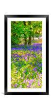 Bluebell Wood, Framed Mounted Print