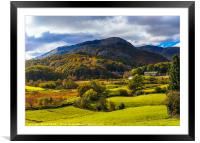 Autumn colours in Little Langdale, Framed Mounted Print