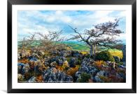 Hawthorn trees and limestone pavement, Framed Mounted Print