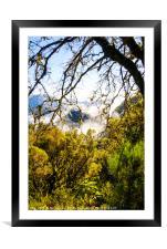 Cloud forest, Madeira, Framed Mounted Print