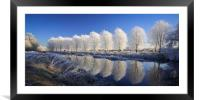 Mirror Trees, Framed Mounted Print