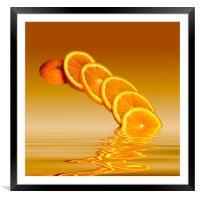 Slices Orange Citrus Fruit, Framed Mounted Print