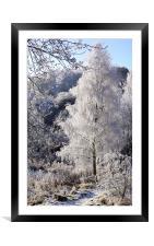 Crystal Tree, Framed Mounted Print