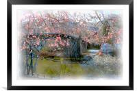 Iron Bridge in Spring, Framed Mounted Print