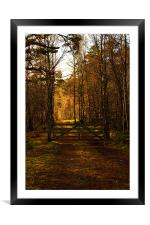 Gate Into the Sunlight, Framed Mounted Print