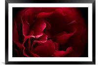 Intimacy, Framed Mounted Print
