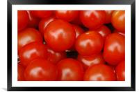 tomato, Framed Mounted Print