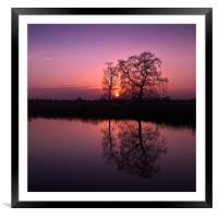 Tree Sunset, Framed Mounted Print