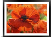 One Among Thousands, Framed Mounted Print