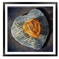 Heart Stone, Framed Mounted Print