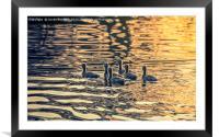 On Golden Pond, Framed Mounted Print