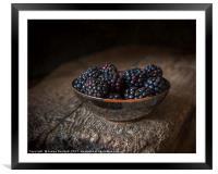 Blackberries in a Bowl, Framed Mounted Print