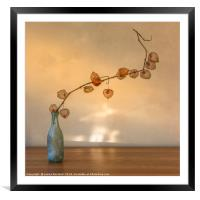 Physalis in a Bottle, Framed Mounted Print