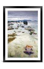 Littered with Stars , Framed Mounted Print