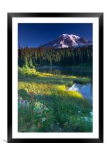 Majestic , Framed Mounted Print