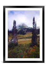 Fruit of Summer , Framed Mounted Print