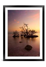 Florida Keys Sunset, Framed Mounted Print