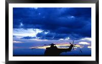 Puma at Sunset, Framed Mounted Print