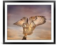 The Eagle Owl Has Landed, Framed Mounted Print
