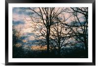 Sunrise, Framed Mounted Print