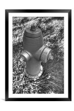 Hydrant, Framed Mounted Print