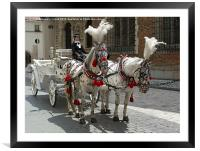 Cracow Carriages , Framed Mounted Print