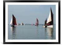 Maldon Barge Match 2008, Framed Mounted Print