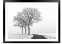Three Trees, Framed Mounted Print