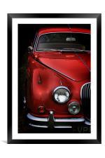 Jaguar, Framed Mounted Print