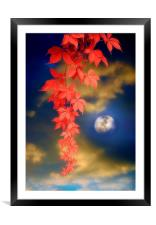 Enchanted Evening, Framed Mounted Print
