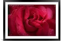 Red Diamonds, Framed Mounted Print