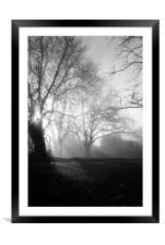 Misty Morning, Framed Mounted Print