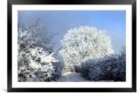 Winter scene, Framed Mounted Print