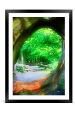 Framed Woodland, Framed Mounted Print