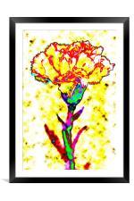Carnation Art, Framed Mounted Print