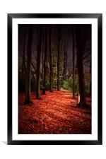 Autumn Carpet, Framed Mounted Print