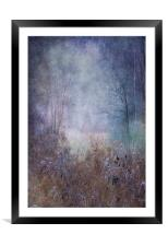 Fairy Glade, Framed Mounted Print