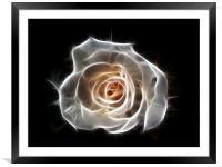 Rose of Light, Framed Mounted Print