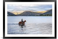 Horse at Airds Bay Loch Etive, Framed Mounted Print
