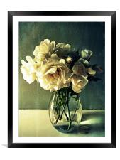 faded beauty, Framed Mounted Print