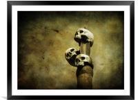 3 skulls, Framed Mounted Print