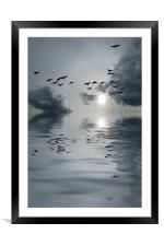flying home, Framed Mounted Print