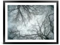 blue mist and trees, Framed Mounted Print