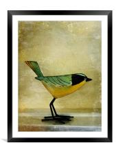 green jay, Framed Mounted Print