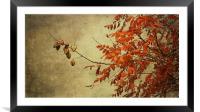 a golden autumn light, Framed Mounted Print
